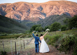 Bride and groom walking through fruit orchards
